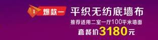 CNBZ_首页_厂商通栏_右_313-80